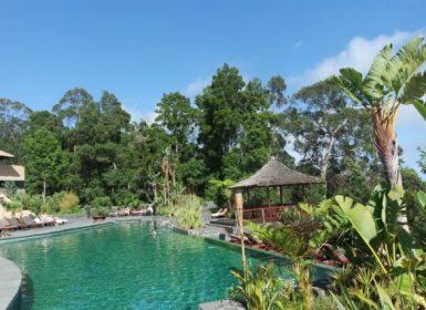 Choupana Hills@viagensa4_ too green