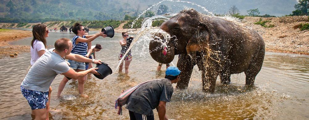 Elefante na província de Kanchanaburi