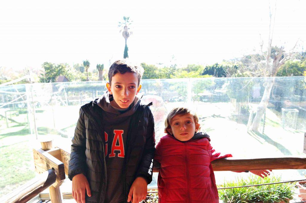 Jardim zoológico de Lisboa, Tiago e Vasco