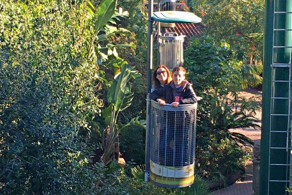 Jardim Zoológico de Lisboa, sempre deslumbrante!