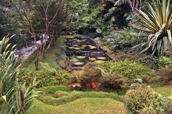 Parque Terra Nostra | Furnas – Açores – Portugal ❤