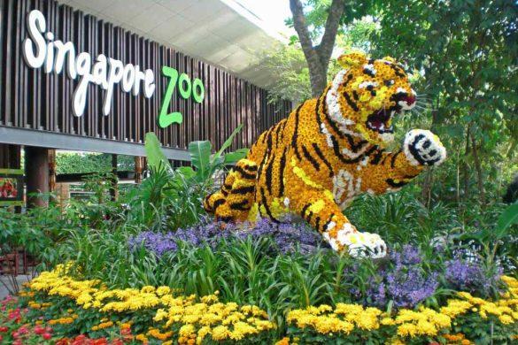 TOP 10 Singapura   A nossa experiência num dos países mais surpreendentes do mundo!